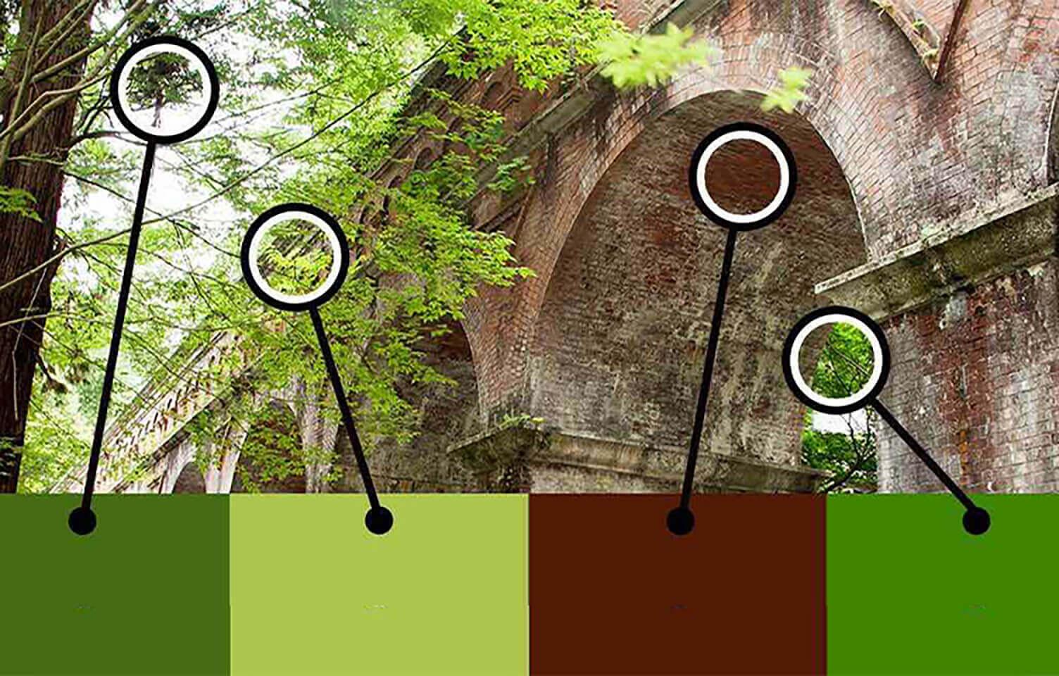 写真からスポイトツールで色を抽出している画像